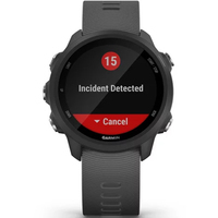 Фото Часы Garmin Forerunner 245 Music Black-Red 010-02120-30