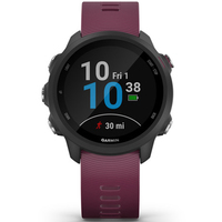 Часы Garmin Forerunner 245 Black-Berry 010-02120-11