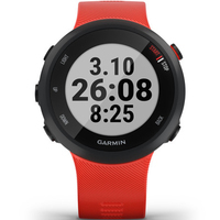 Фото Часы Garmin Forerunner 45 Large Lava Red 010-02156-16