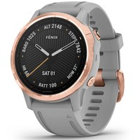 Фото Спортивные часы Garmin Fenix 6S Rose Gold-tone with Powder Gray Band 010-02159-21